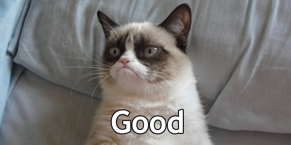 Grumpy_Cat-Good